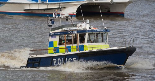 Hero woman 'jumped into river to try and save schoolboy' who fell into Thames