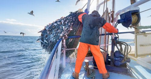 France detains British fishing boat in row over Brexit rights