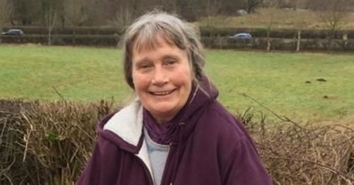 Woman attacked by herd of cows who kill dog and leave her in coma for eight days