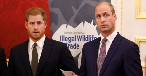 William will come out of Harry's memoir 'worst of all', says royal expert