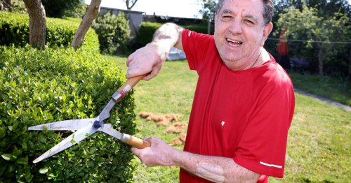 First Brit to have double hand transplant now gardening and can even use mower