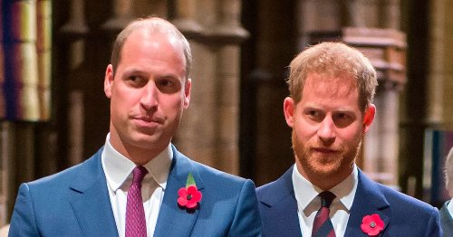Harry and William 'unlikely' to have chance to meet up before Philip's funeral