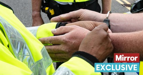 Hundreds of killers and rapists among foreign criminals entering UK undetected