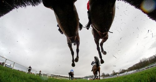 What happens to racehorses when they retire from racing in the UK