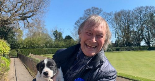 All we know about the killing of MP David Amess after knife found at scene