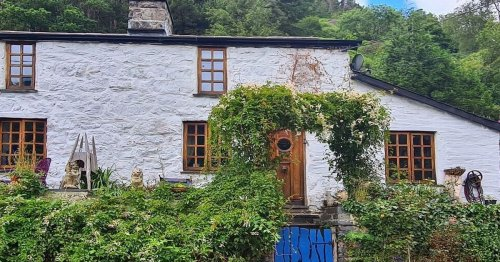 Savvy couple transform rundown cottage into dream home after escaping city