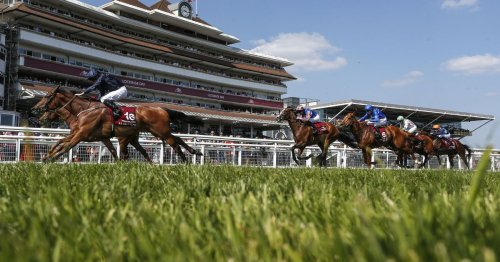 Newsboy's racing tips for Ayr Gold Cup fixture and UK cards on Friday