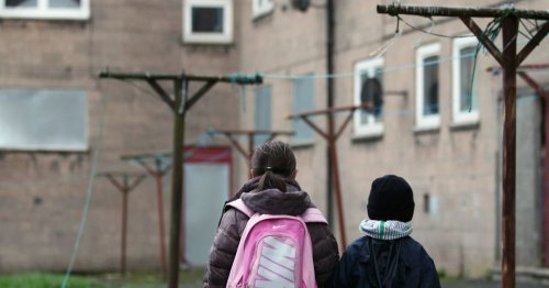 Term 'white privilege' may have worsened neglect of poorer pupils, say MPs