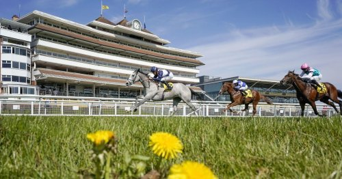 """Royal Ascot 2021 Richard Hannon runners headlined by """"very special"""" Snow Lantern"""