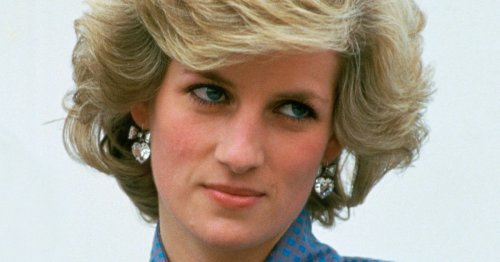 Diana's pal 'only allowed to publish book after Harry and William got married'