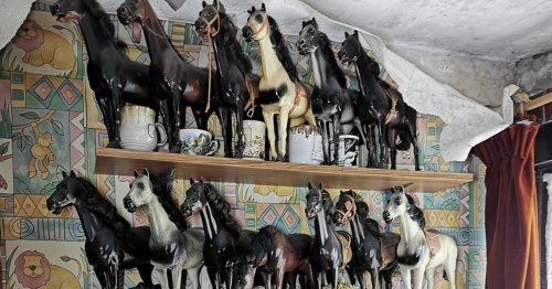 Abandoned house full of horse trinkets and stuffed owls left untouched for years
