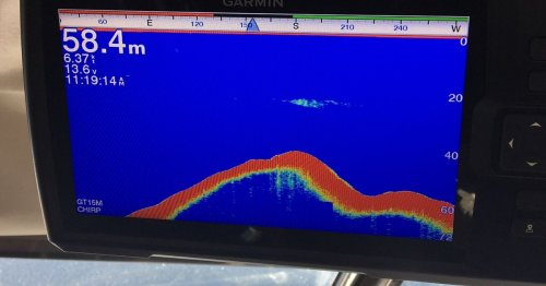 Loch Ness Monster 'spotted on sonar' as images show mystery underwater creature