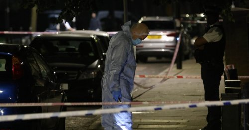 Man in his 30s stabbed to death in street after 'group seen fighting'