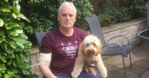Man mauled by 'frenzied' pitbull while pulling it off his dog wins £1,000 payout