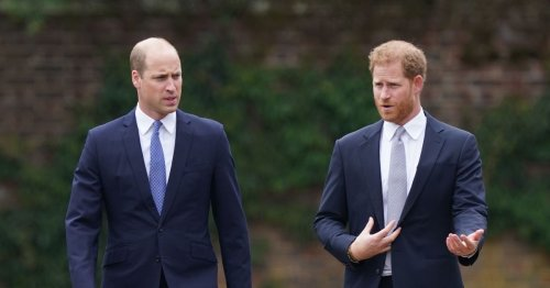 Harry and William 'put on good show but there may be way to go,' biographer says