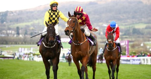 Five-day Cheltenham Festival considered for 2023 with Gold Cup on the Friday