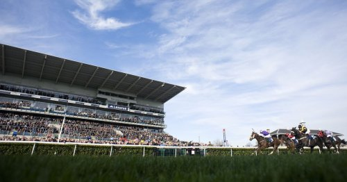 Newsboy's Saturday tips for ITV races at Haydock and Musselburgh