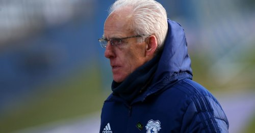 Mick McCarthy responds to claims Cardiff owner told fans he wants new manager