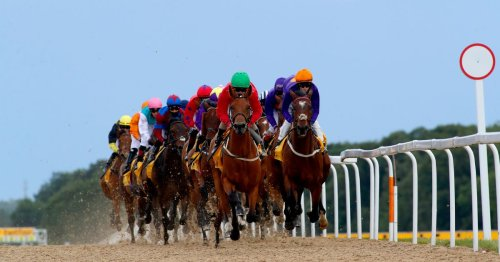Newsboy's racing tips for Bath, Newton Abbot and Newcastle on Monday