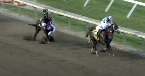 Winning horse disqualified and loses owners £438k after chaotic race finale