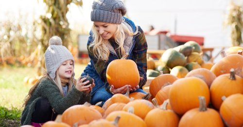 UK's best pumpkin patches for families including fun Halloween events for 2021