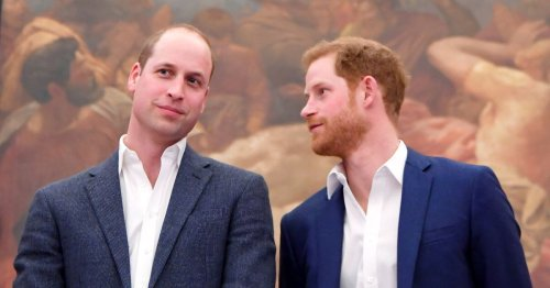 Princes William and Harry loved going to McDonalds - but it wasn't for the food