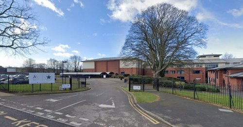 1,300 pupils evacuated from school after it shuts due to false widow sighting