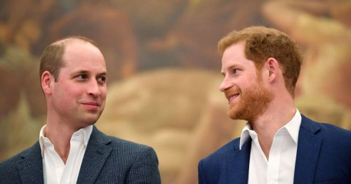 William name-checks Harry during Diana statue speech in rare show of unity