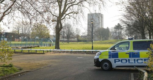 Boy, 14, stabbed 'multiple times' during brawl with 'more than a dozen people'