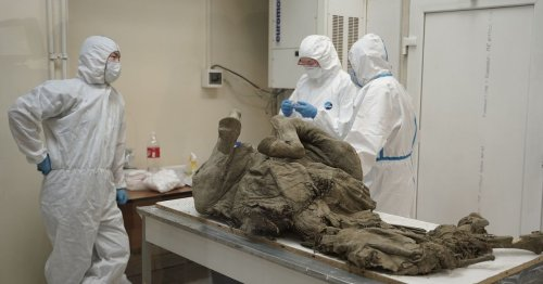 Russia to unlock 50,000-year-old prehistoric viruses from buried creatures