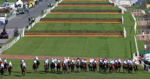Grand National tips for Aintree