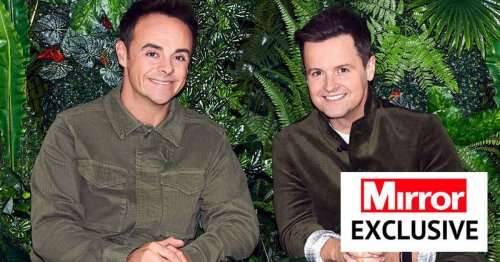 I'm A Celeb's Australia camp cancelled last minute as filming returns to Wales