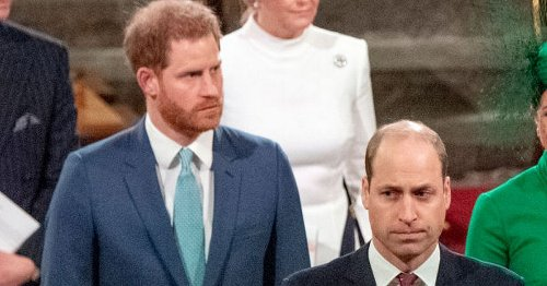 Harry and William 'to give separate speeches at Diana's statue unveiling'