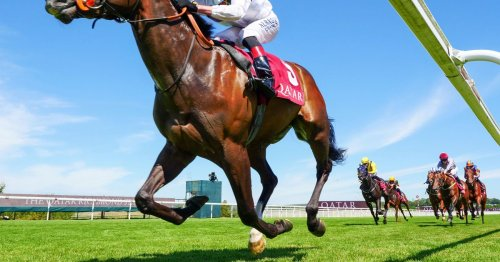 Five best bets for Newmarket July Festival including 14-1 each-way selection