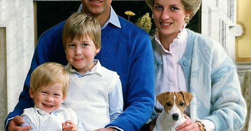 Beautiful Princess Diana possessions inherited by William and Harry after death