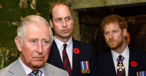 Charles 'desperate' to reconcile with Harry but William 'has trust issues'