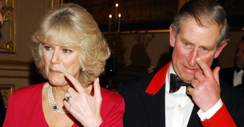 "Camilla accused of ""mafia thug move"" with handwritten note to Princess Diana"