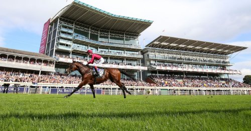 Mishriff one of the stars confirmed for Ascot's QIPCO British Champions Day