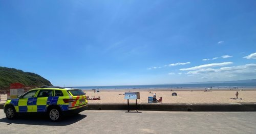 Police throw 100 'drunken' youths off Devon beach and issue warning to visitors