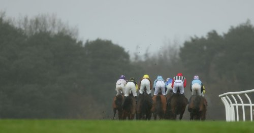 Newsboy's racing tips for Bath, Chelmsford, Exeter and Pontefract