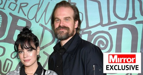 Cockroaches invade Lily Allen and Stranger Things' star David Harbour's home
