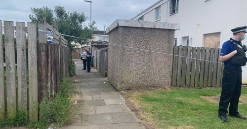 Teen girl, 15, and woman, 28, arrested after the body of a female found at home