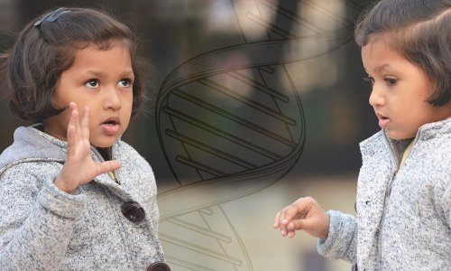 Blaming Our Genes: The Heritability of Behavior