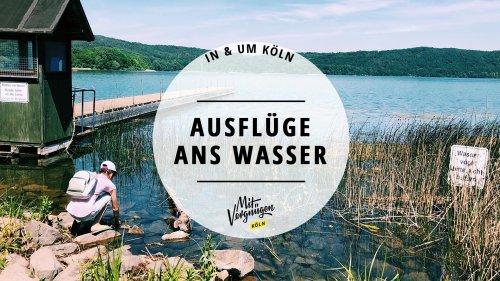 Seen, Talsperren und Weiher: 11 Ausflüge ans Wasser in und um Köln