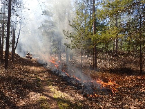 Prescribed burns planned at Sleeping Bear Dunes National Lakeshore this spring