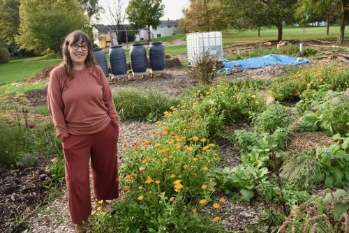 Harvest Festival on tap to celebrate Ann Arbor's new community food forest