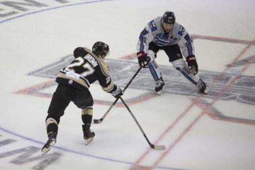 ECHL's Kalamazoo Wings switch NHL affiliation to Columbus Blue Jackets