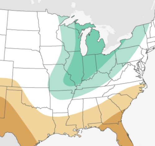 NOAA experts' winter forecast gives 2 heads-ups for Michigan