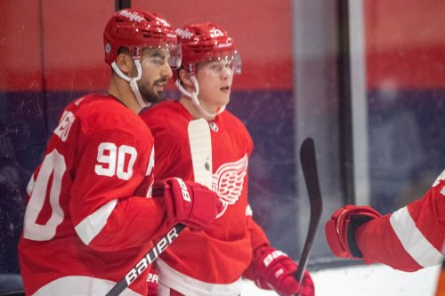Questions on health, competition for jobs as Red Wings start training camp