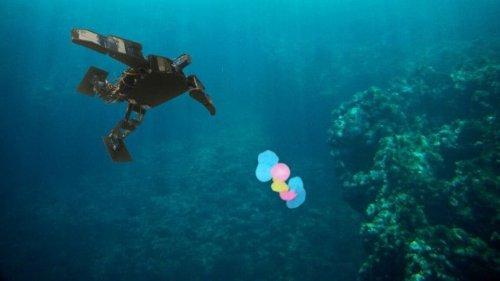 Forscher:innen entwickeln Mikroroboter zur Beseitigung von Mikroplastik